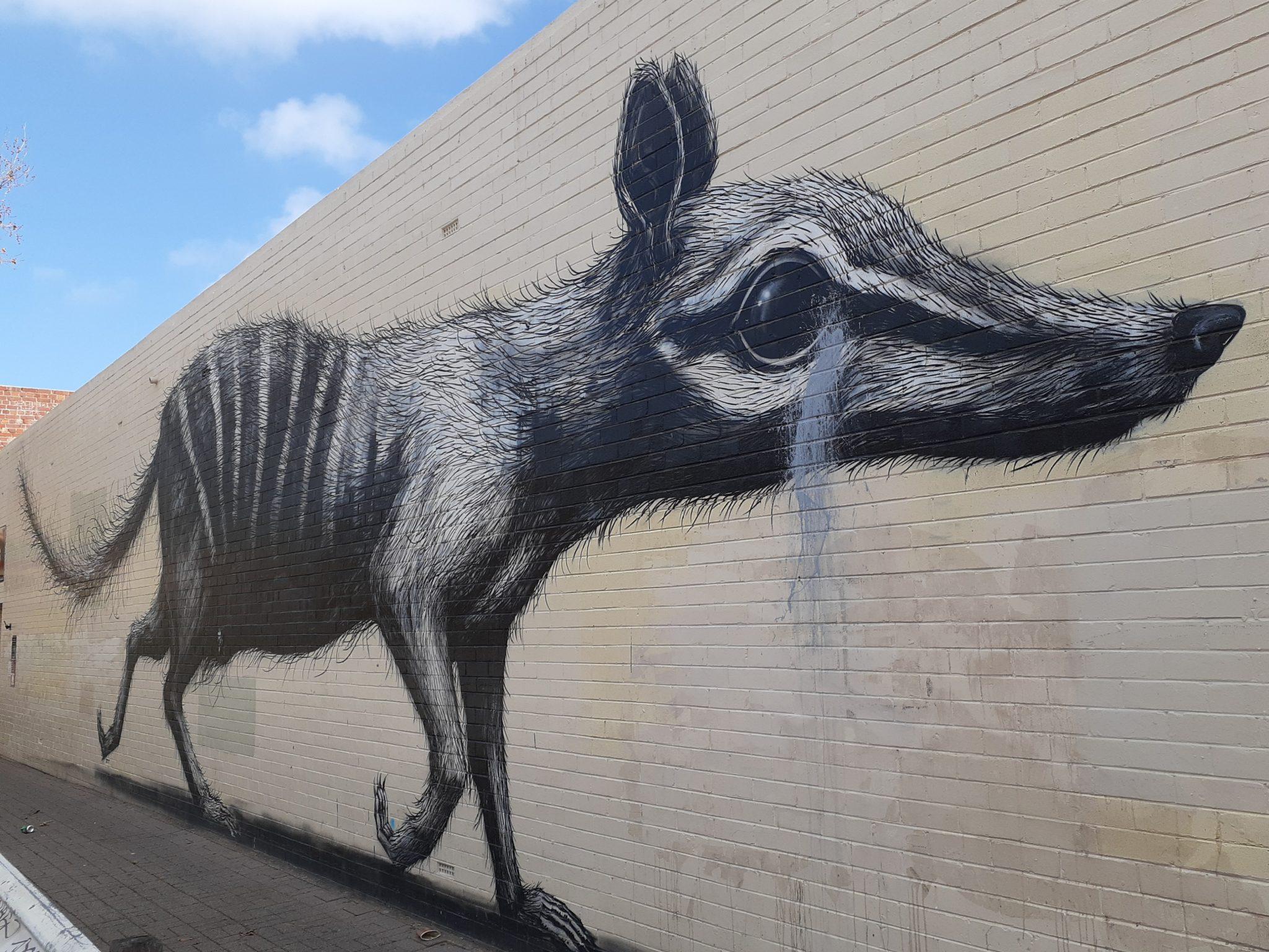 Fremantle Markets Numbat street facade art